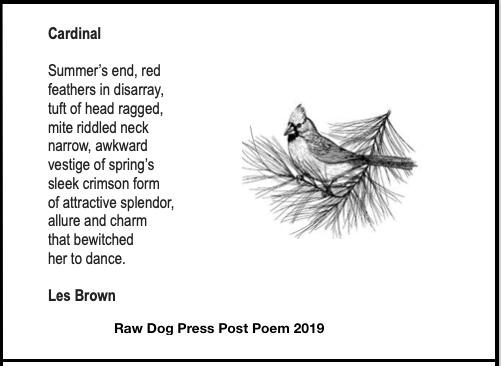 Cardinal Brown Nov.jpg